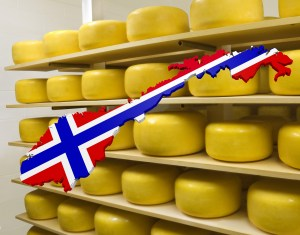 Shape of Norway on ripening Cheese Wheels background