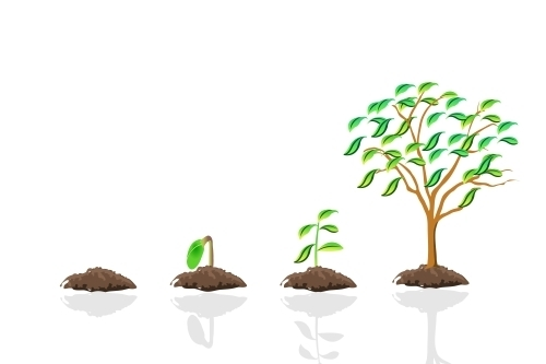 L'Union européenne et l'agriculture durable