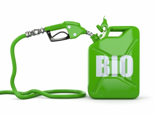 Indirect land use change (ILUC) and biofuels in the EU