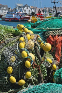 Fisheries: why technical measures matter