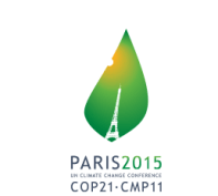 Towards a new international climate agreement
