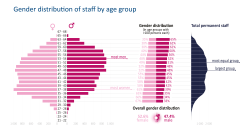 Gender distribution of staff by age group
