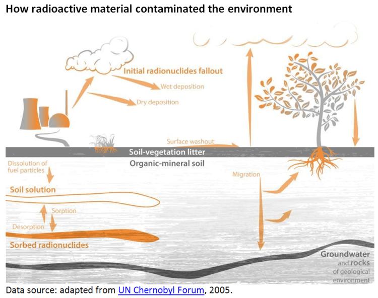 How radioactive material contaminated the environment