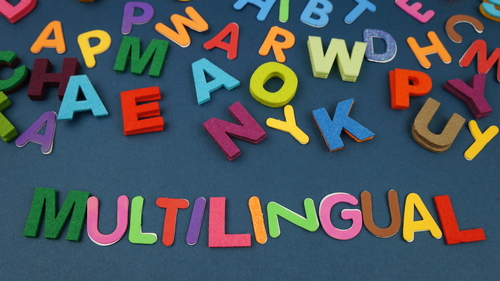 Language equality in the digital age