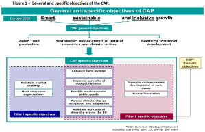 General and specific objectives of the CAP