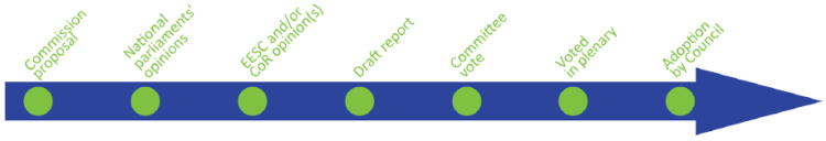 timeline 7 steps finished - adoption by council