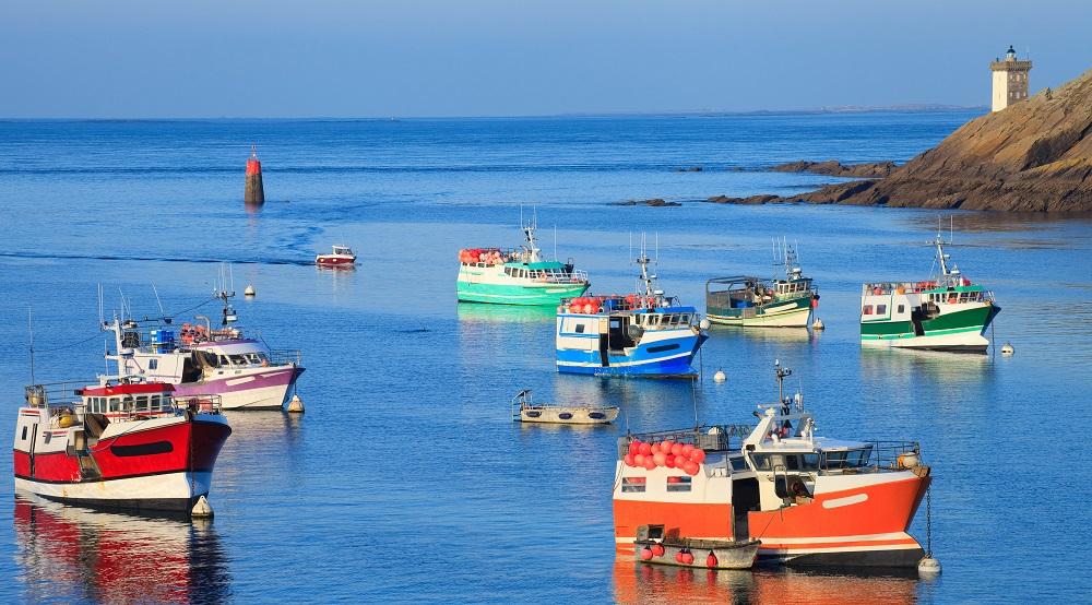 Multiannual plan for fisheries in the Western Waters [EU Legislation in Progress]