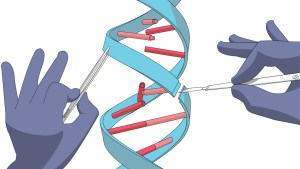 Manual genetic engineering. Manipulation of DNA with bare hands, scalpel and tweezers. Isolated on a white background