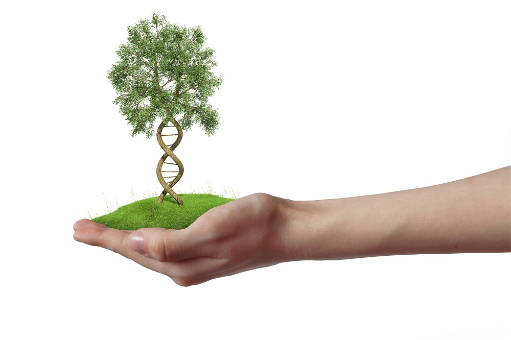 What if we genetically engineered an entire species? [Science and Technology Podcast]