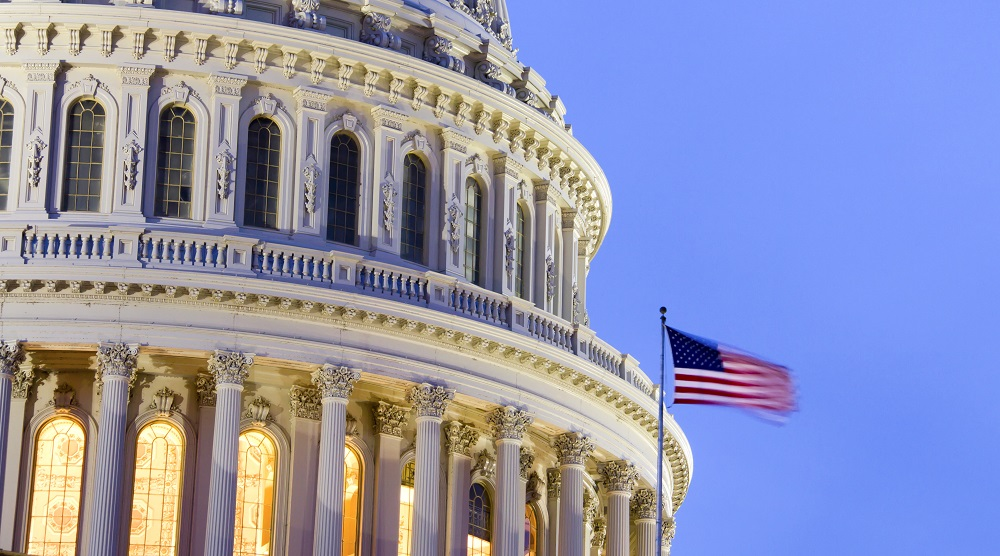 The US Congress in 2019: What to expect
