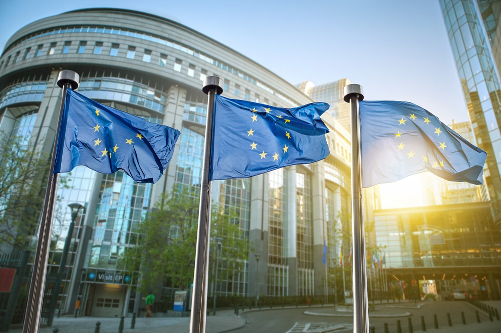 European elections: how to stand as a candidate