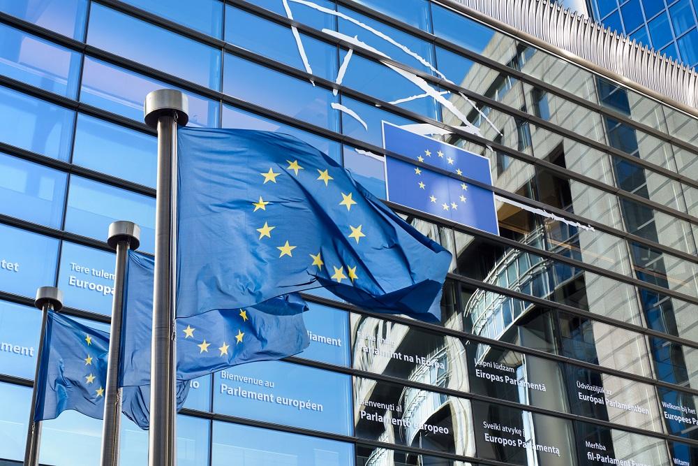 Understanding European Parliament delegations