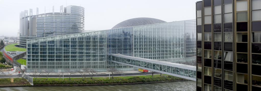 European Parliament Plenary Session February 2020