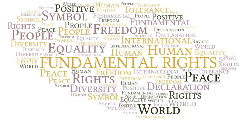 Citizens' enquiries on the EP resolution on the fundamental rights of people of African descent in Europe