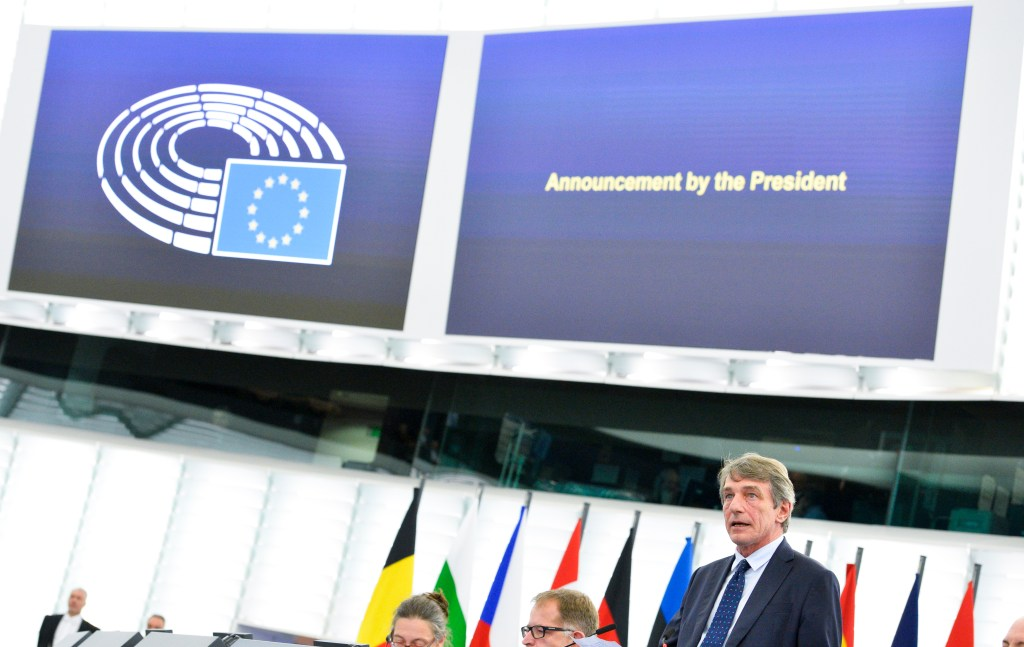 Citizens' enquiries on the composition of the European Parliament, following Court of Justice ruling on case C-502/19
