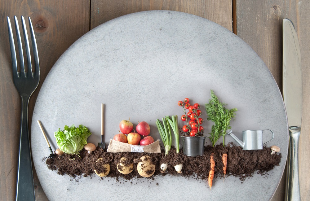 'Farm to Fork' strategy: Striving for healthy and sustainable food