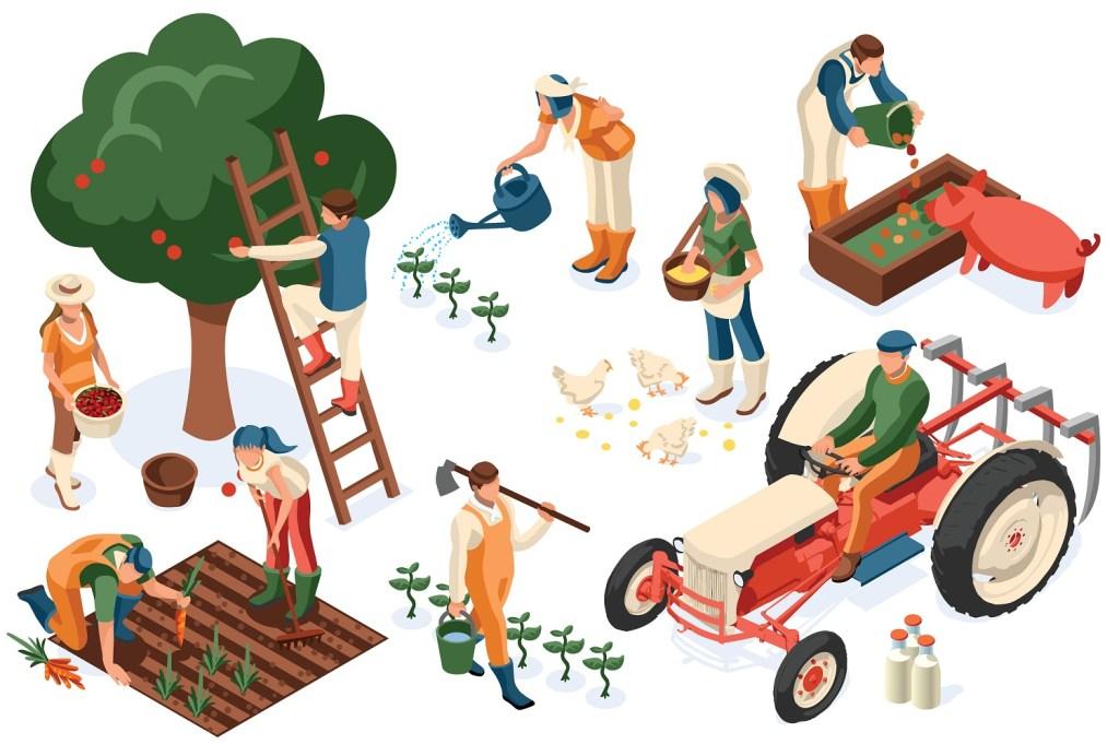 Understanding farm structure