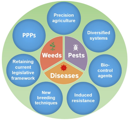 The future of crop protection in Europe