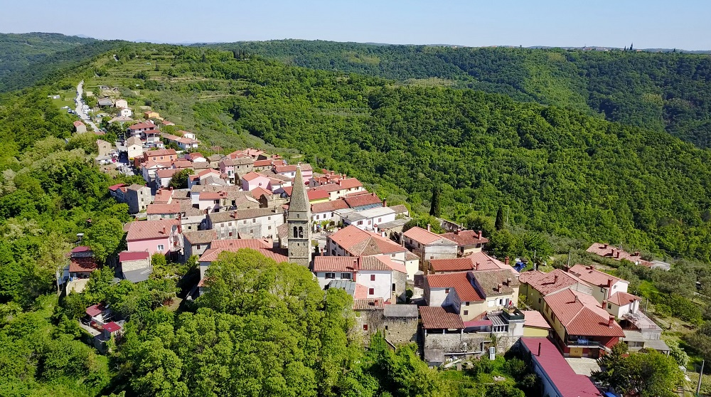 Smart villages: Concept, issues and prospects for EU rural areas [Policy Podcast]