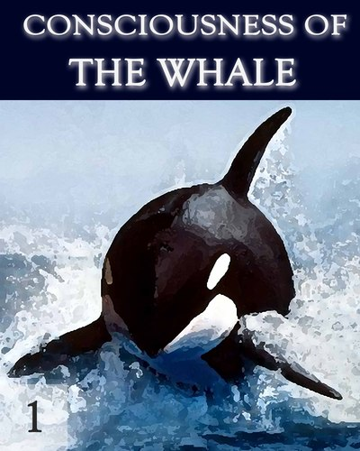 Consciousness-of-the-whale-part-1