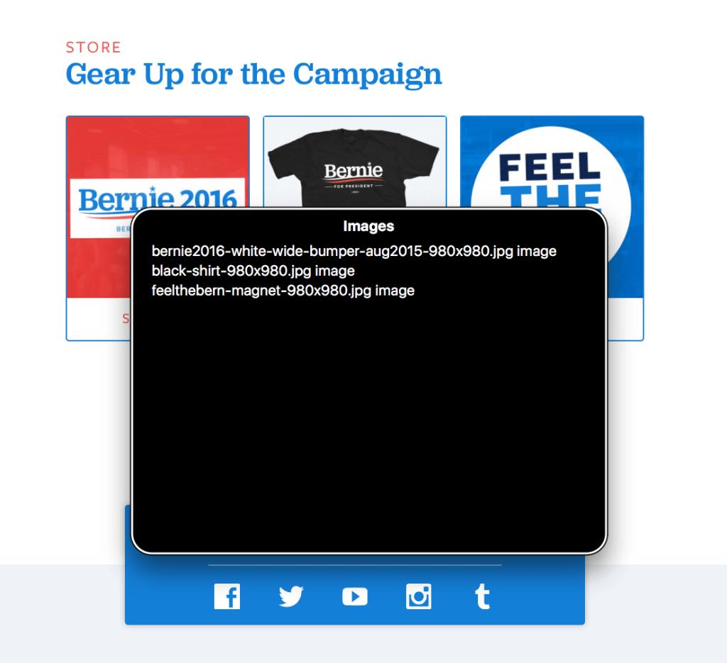 Screenshot of Sanders' homepage