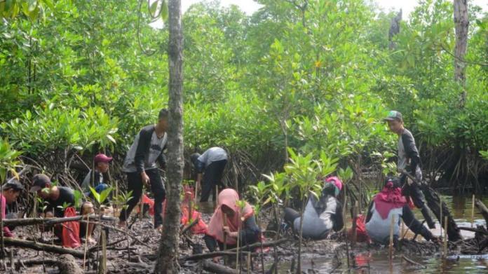 TANAM MANGROVE. Para pelajar menanam bibit mangrove di Dusun Cabang Roan Desa Batu Ampar Kabupaten Kubu Raya, Minggu (4/3). Rizka Nanda-RK
