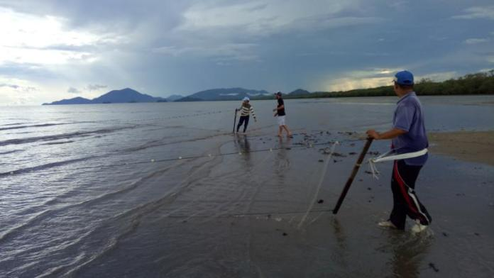 PUKAT TARIK. Pantai Siduk selain indah dipandang, juga jadi tempat warga untuk menangkap hasil laut dengan menggunakan pukat tarik, Selasa (22/5). Kamiriluddin-RK