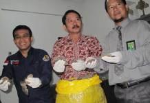 GAGAL DIPERJUALBELIKAN. Petugas menunjukkan sisik Trenggiling hasil pengungkapan di Nanga Pinoh, Melawi saat menggelar rilis di Mako SPORC Jalan Mayor Ali Anyang, Jumat (25/5). Maulidi Murni-RK
