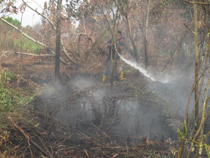 PEMADAMAN. Anggota Damkar Mariana melakukan pemadam kebakaran lahan di Jalan Padat Karya, Pontianak Tenggara, Senin (6/8). Maulidi Murni -RK