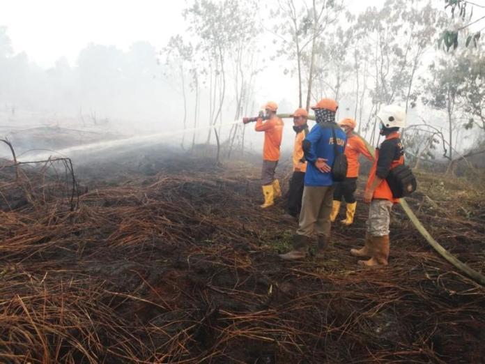 PADAMKAN API. Petugas melakukan pemadamam api di kawasan Parit Cahaya Baru, Jalan Parit Haji Husin 2, Jumat (17/8) sekira pukul 15.00 WIB. Andi Ridwansyah-RK