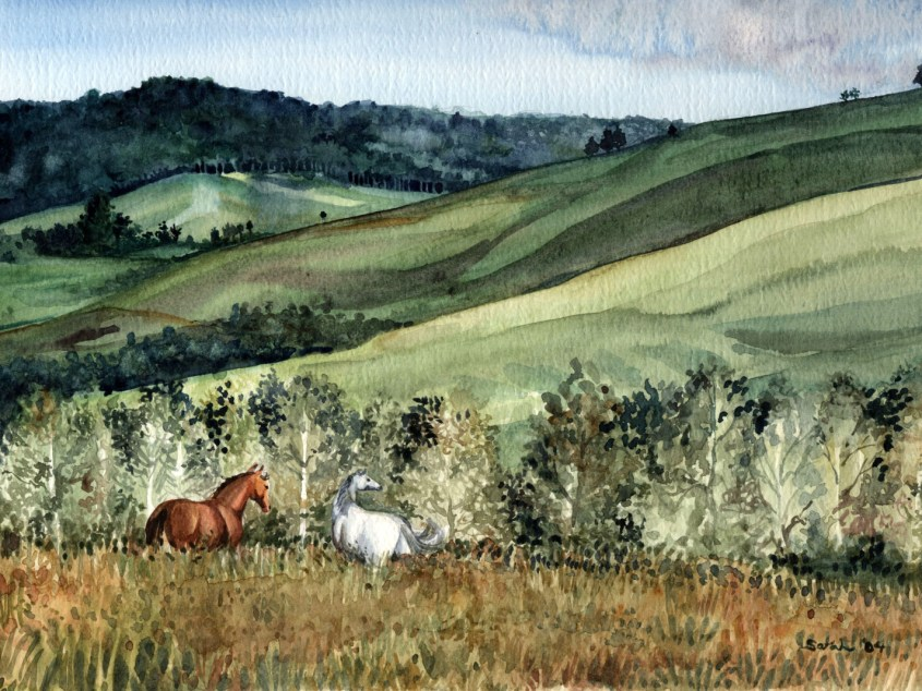 A painting of horses in Papua New Guinea by artist Sarah Snyder.
