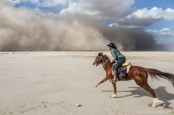 Horse riding photography tip no. 3: Shoot a lot, no matter what! Even sandstorms are no excuse!