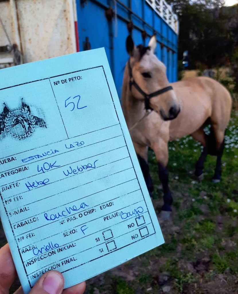 My official competitor card for endurance riding in Chile