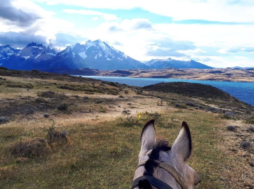 Torres del Paine mountains and Lago Sarmiento seen through my horses ears