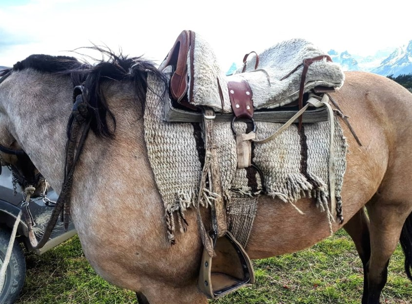 A traditional Chilean farm saddle