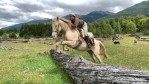 In Patagonia Horses and their riders have to overcome many obstacles.