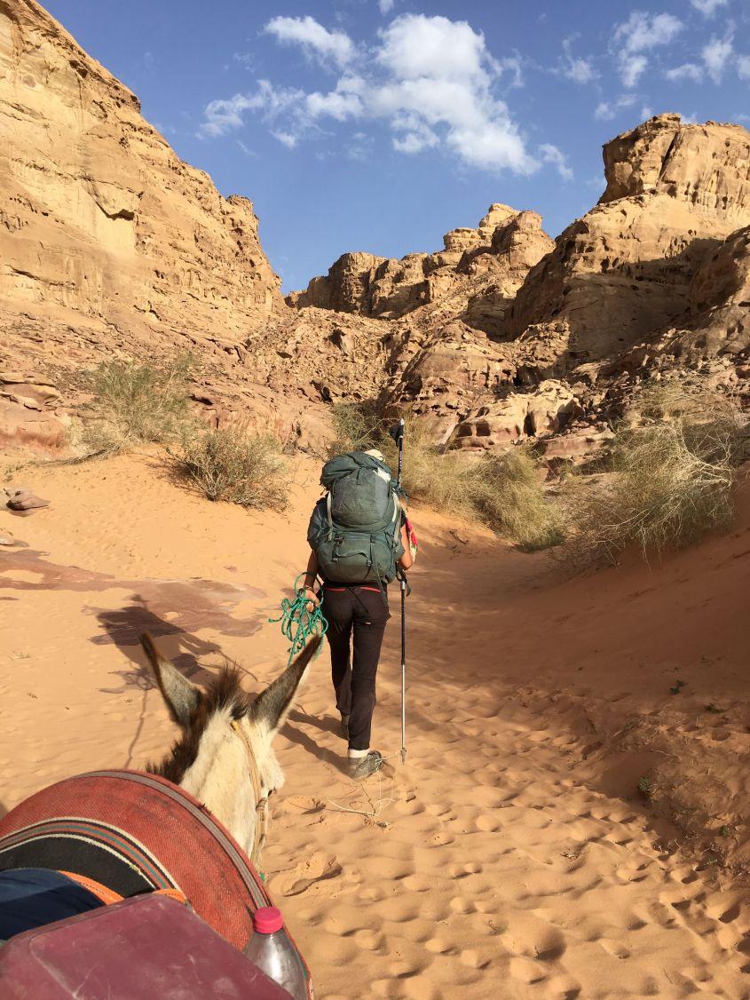 My donkey Yustra enjoyed the soft sanf on this part of the Jordan Trail