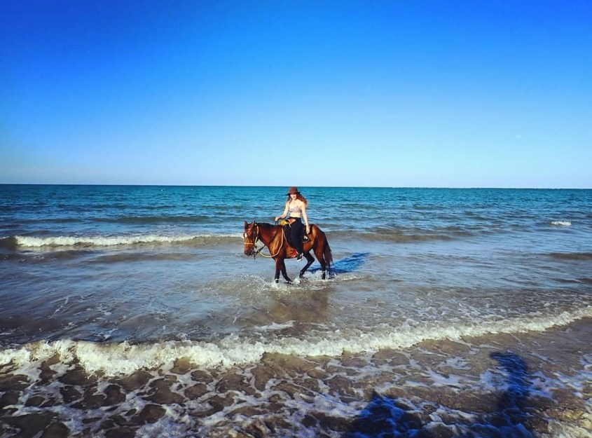 Cooling off a horse in Brazil in the ocean