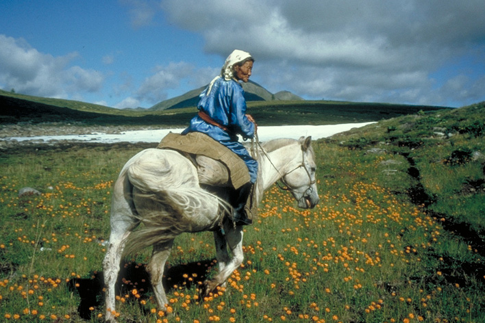 An elderly Mongolian woman is riding her horse through the meadow