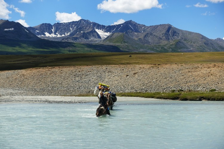 Crossing the white river in western mongolia on horseback. The water is up to the horses chest.k with 2 camels.