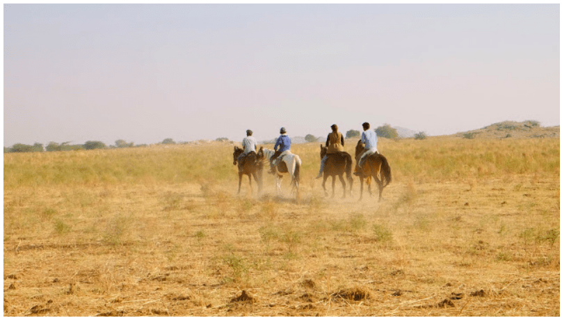 500km bareback horse riding across Rajasthan with 3 friends