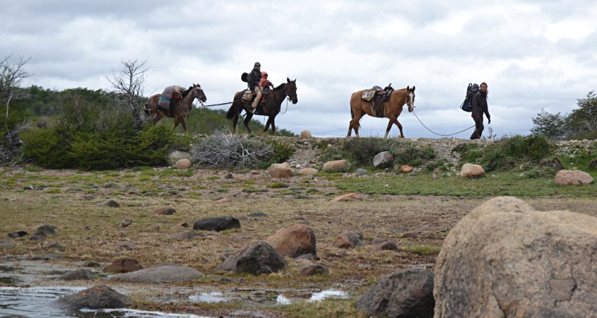 the horseback riding adventure in south america takes time because the caravan of horses is mostly moving in walk