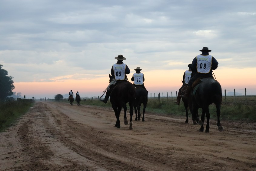Competitors in the international Marcha 2019 in Jaguarão, an endurance race for Criollo Horses.