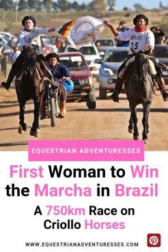 Criollo Horses in Brazil - Pinterest