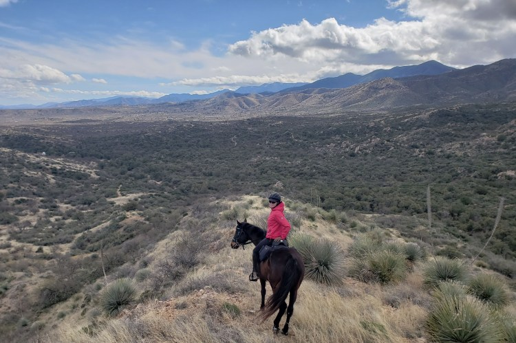 Enjoying the view from horseback in Oracle, Arizona