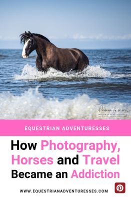 photography, horses and travel - How equestrian Photography became an addiction - Pinterest picture
