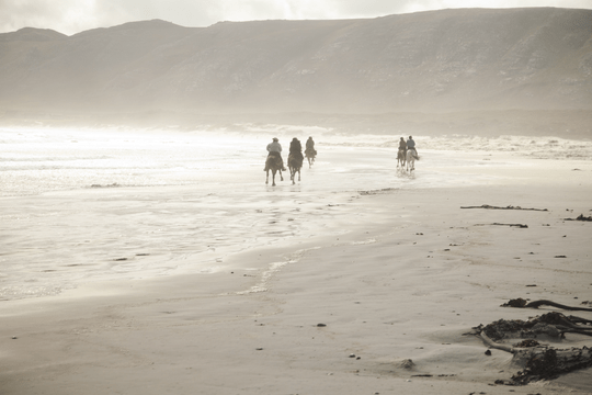 By saving 135 USD on this trip in South africa, it becomes a super cheap horse riding holiday