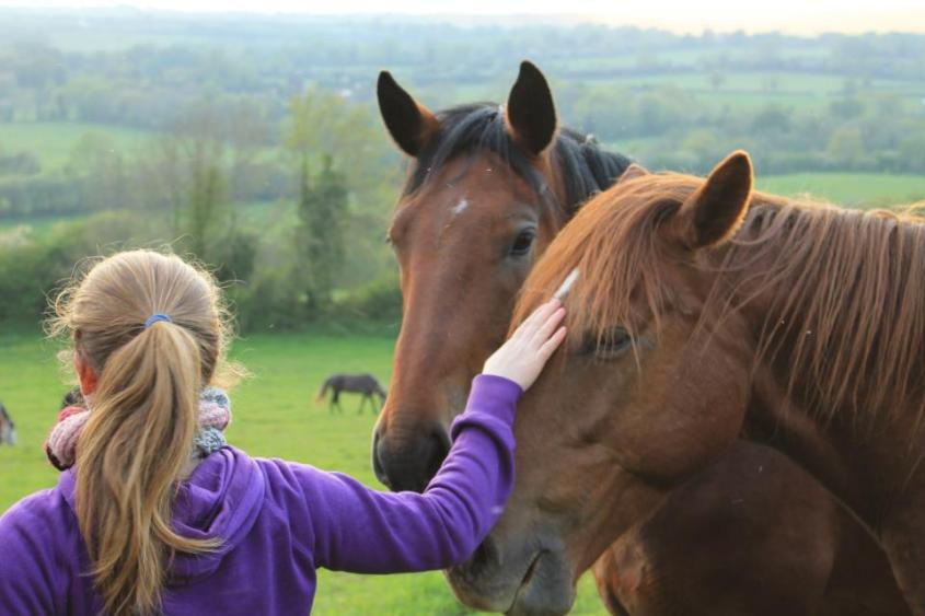 Caitlin joining up with two semi-wild horses while working in Ireland