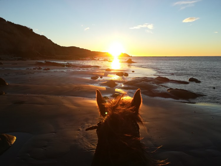 The setting sun is leading the way for horse riders in Argentina along the beach in Tierra del Fuego.