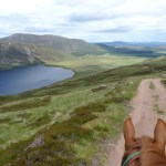 When it is sunny, horse riding in Scotland is stunning and very rewarding. The view over the lakes, valleys and mountains is breathtaking.